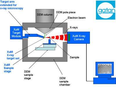 gatan-xum-schematic-48309-1.jpg