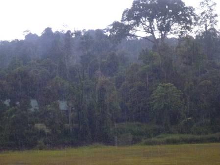 Rain-rain-rain.jpg