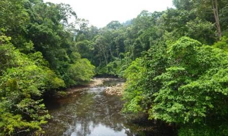 Maliau-River.jpg