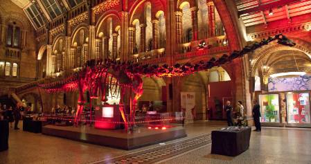 dippy-lit-up-red-1500.jpg
