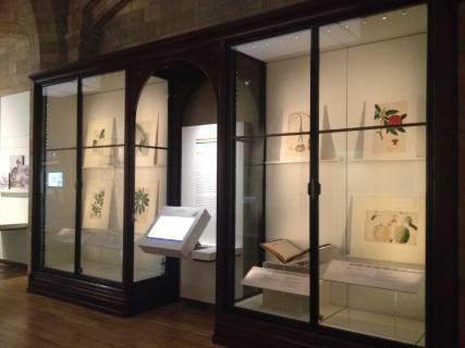 gallery indian 2.JPG