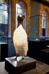 great-auk-treasures.jpg
