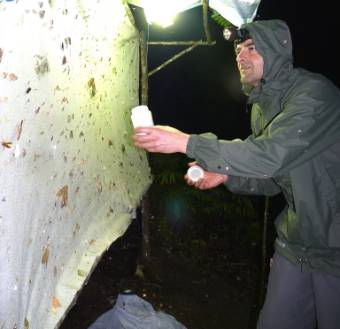Me at a light trap in Borneo Collecting moths.jpg