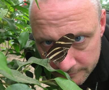 luke-fave-butterfly-1500.jpg