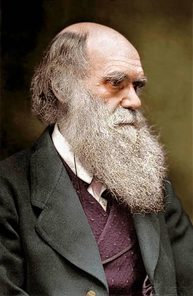 NaturalHistoryMuseum_PictureLibrary_Darwin.jpg