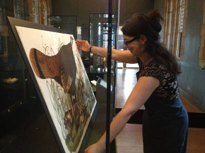 Tina Konstantinidou changing Audubon display.jpg