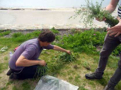 mark-bagging-weeds.jpg