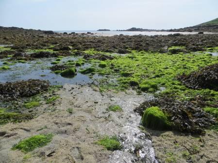 6 Pelistry Bay.jpg