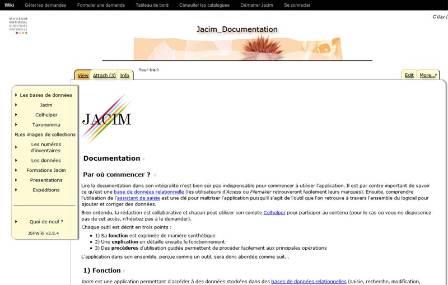 jacim-site.jpg