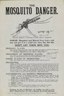 DF514_1_1_1_2_Poster_issued_by_the_Museum_mosquito.jpg