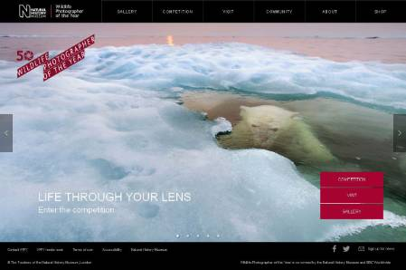 wpy-site-homepage-dec-9-2013.jpg