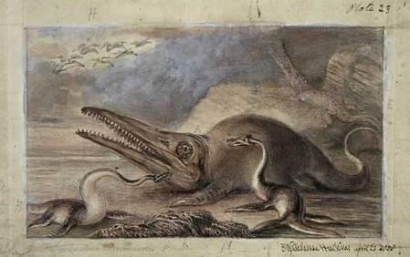 Icthyosaurus & Plesiosaurus NHMPL 011937.jpg