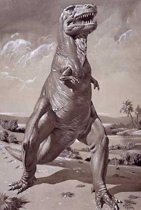 Tyrannosaurus rex NHMPL 002915.jpg
