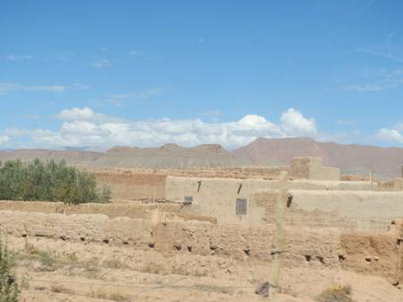 982 landscape.jpg