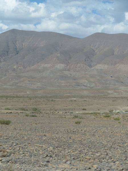985 landscape.jpg