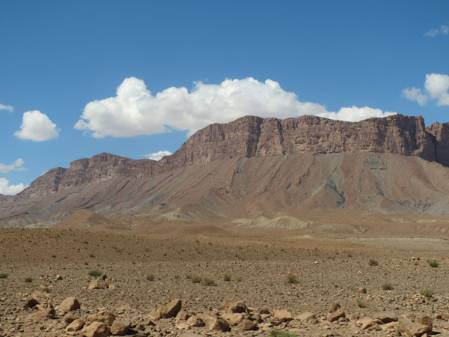 987 landscape.jpg