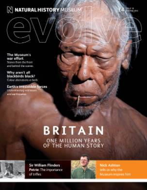 DS3988_Evolve18_COVER.jpg