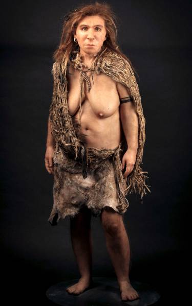 neanderthal-wioman-graphic.jpg