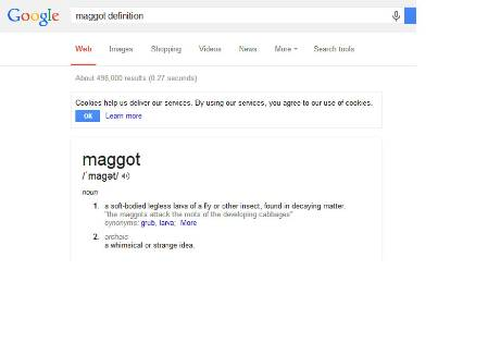 maggot definition.jpg