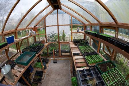 pic10-greenhouse-1500.jpg
