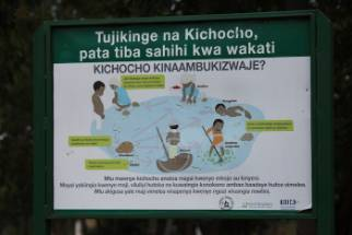 kichocho.jpg