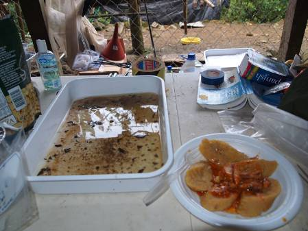 lunch-image_jpeg700.jpg