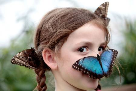 butterfly-girl-face-uncropped-1500.jpg