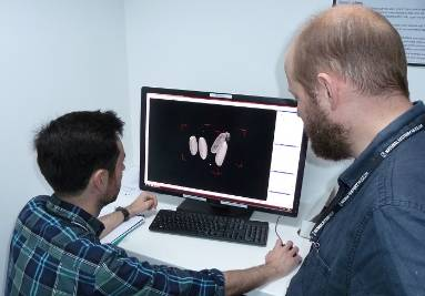 Thomas Simonsen and Daniel Martin-Vega analysing CT images of 5 pupae.jpg