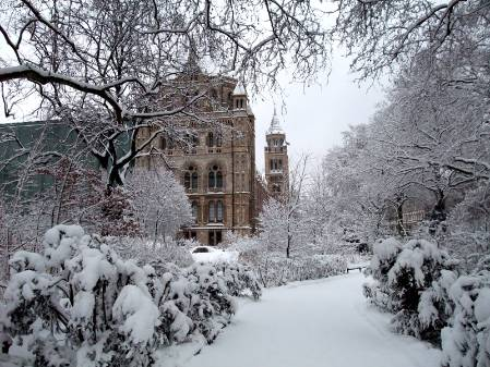 DSCF0339_snow_NHM.jpg