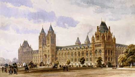 NaturalHistoryMuseum_PictureLibrary_001300_Comp.jpg
