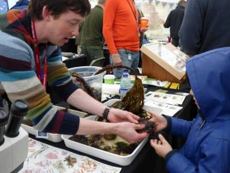 Anthony discussing seaweeds with a child.jpg