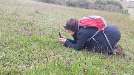 Kath photographing A. morio near Lyme. MW.jpg