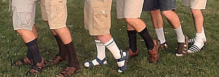 http://www.nhm.ac.uk/natureplus/servlet/JiveServlet/showImage/38-1986-21512/socks+and+sandals+curatorweb.jpg?fromGateway=true