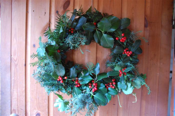 Natureplus Wildlife Garden Blog A Berry Merry Christmas