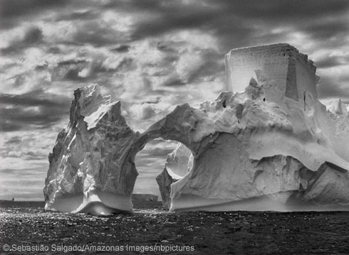 Iceberg in the Antarctic Peninsula
