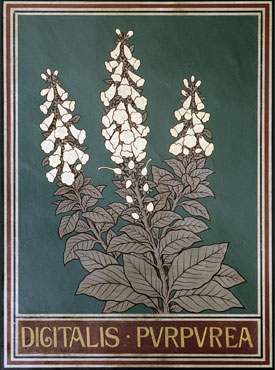 Ceiling panel depicting foxglove