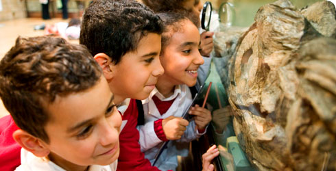 Children examining a dinosaur skeleton.