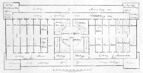 Early plan of the layout of the Museum by Richard Owen.