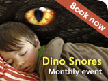 Dino snores