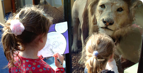 Girls using Discovery Guides to learn about wildlife