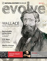 Evolve issue 15