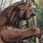 Extinct giant ground sloth.