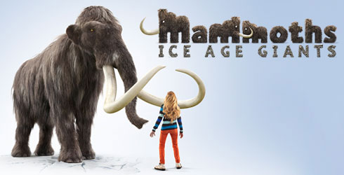 Mammoths graphic design
