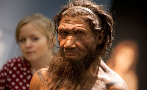 Neanderthal model in the exhibition