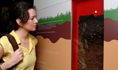 Woman looking at layers in a soil profile.