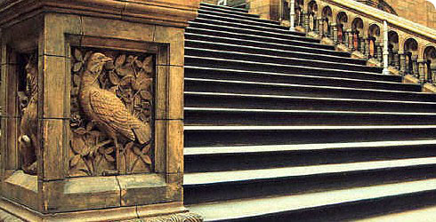 Terracotta ornament on the stairs of Hintze Hall.