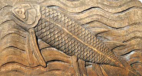 Terracotta coelacanth