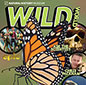Wild World issue 4