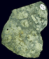 A slab of a cumulate eucrite, a type of achondrite.