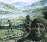 An illustration of Australopithecus africanus in the African Rift Valley.
